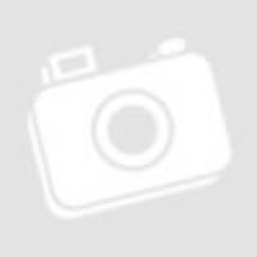 Boho Arc és Ajak Balzsam BJL 01 Hibiscus (ALOHA COLLECTION) 3g