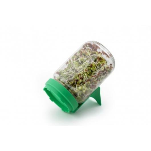 Rédei csíráztató üvegedény